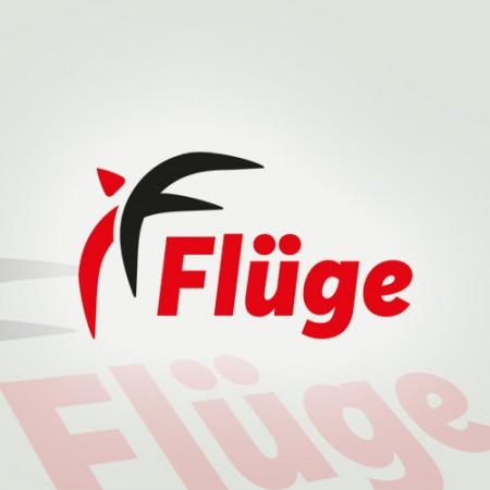 Fluge